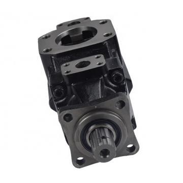 DENISON T6DC-050-025-1R02-B1 vane pump