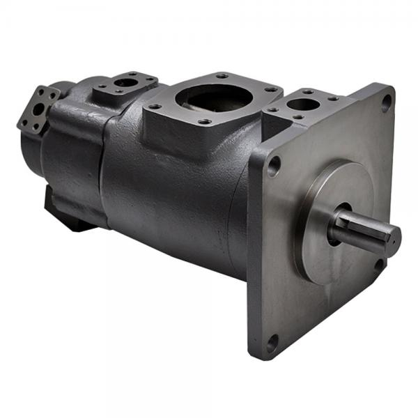 Yuken PV2R14-19-136-F-RAAA-31 Double Vane pump #1 image