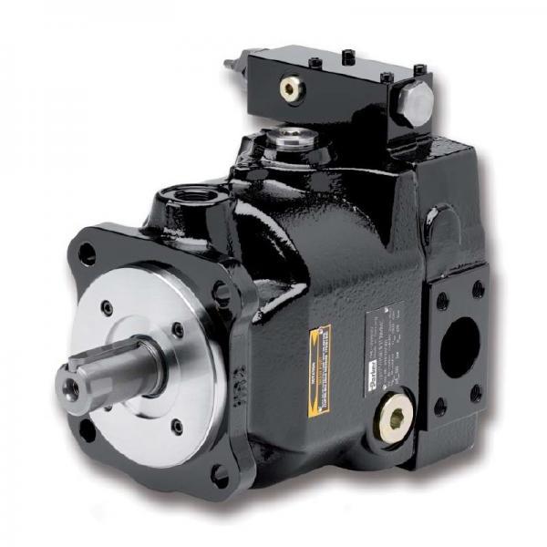 PAKER PV046R1K1T1NMMC Piston Pump #2 image