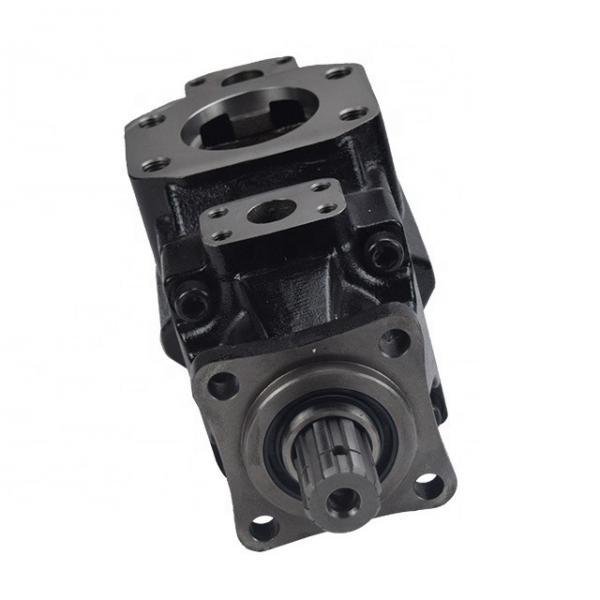 DENISON T6D0282R00B1 vane pump #1 image